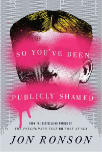 So You've Been Publicly Shamed book cover