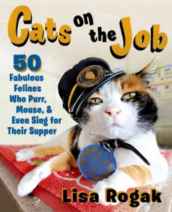 Cats at Work: Cats on the Job | Cedar Mill & Bethany
