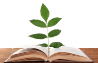 book with plant