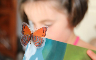 WiserKids girl with book and butterfly