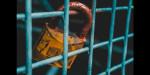 Lock on blue mesh fence