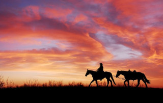 person on horseback at sunset