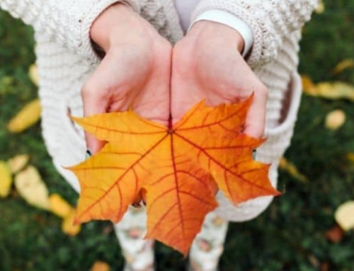 Fall Events for Kids